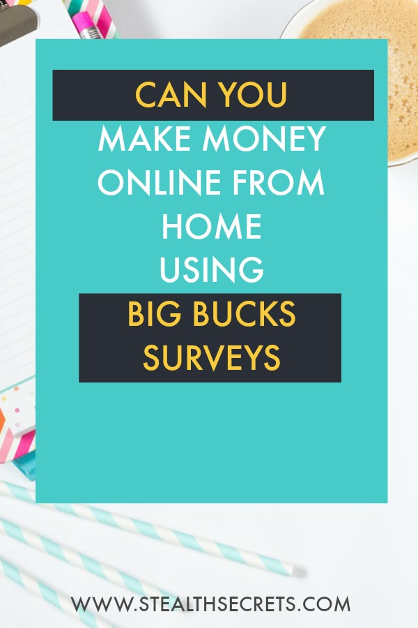 Can you make money with Big Bucks Surveys. Learn some of the best ways to make money from home. If you're looking for at home jobs no experience gig, then we have seen them all. We review the best work at home jobs that will enable you to earn extra money from home. Legitimate work from home jobs can be hard to find, but with our guidance, we show you how to make extra money at home. We give you fast money making ideas, extra income ideas on the best work from home jobs.